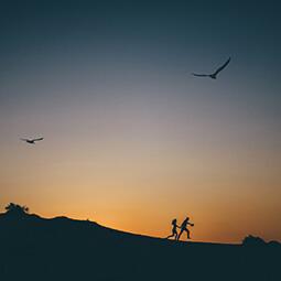 night couple birds sky flying running adventure sunset photography travel UGC content